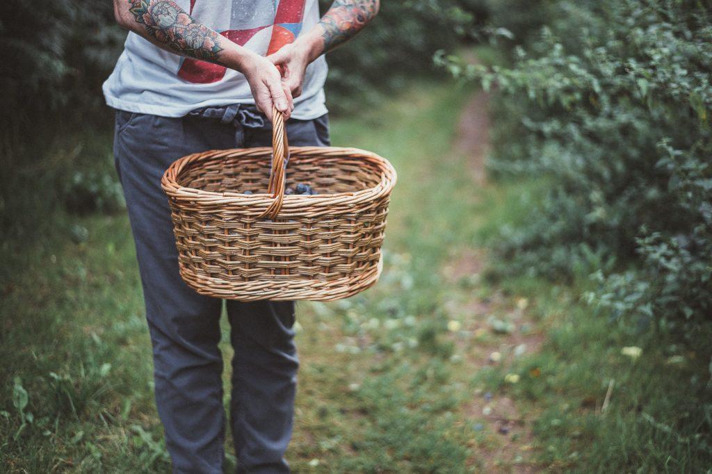 Forage Basket